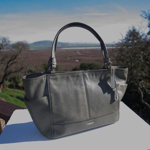Coach Park Leather Carrie Tote F29898 Olive Green